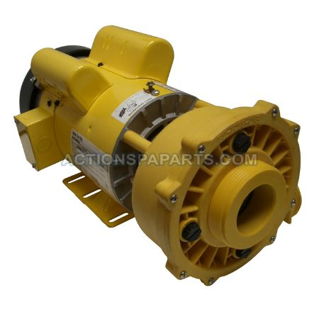 Picture for category Coast Spa Pumps